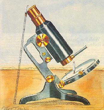 microscope.jpg (33239 bytes)